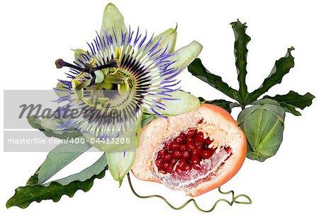 Passion fruit (Passiflora flavicarpa) flower isolated on white background