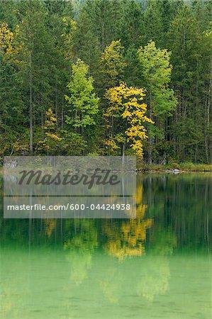 Lac Hintersee à l'automne, Parc National de Berchtesgaden, en Bavière, Allemagne