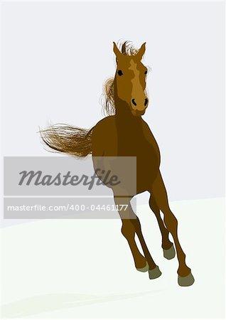 magnifique cheval de course