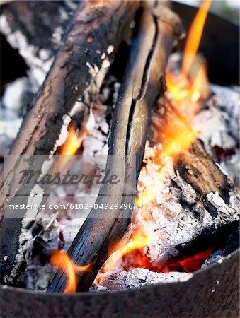Burning log, close-up