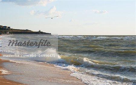 Sea surf wave break on coastline