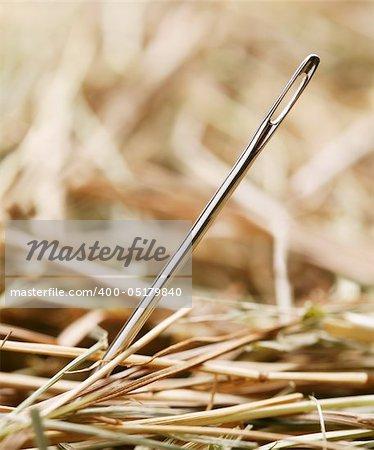 Needle is in a haystack