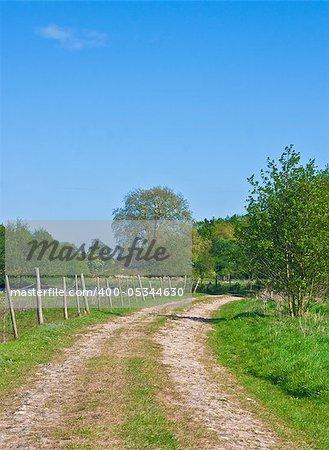 Idyllic rural scene in Suffolk, UK