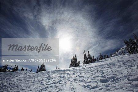 Paysage d'hiver, montagne de Whistler, Whistler, Colombie-Britannique, Canada