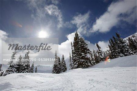 Mont Whistler, Whistler, Colombie-Britannique, Canada