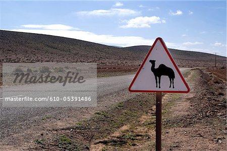 Maroc, près de Guelmim, route de la plage de sable blanc