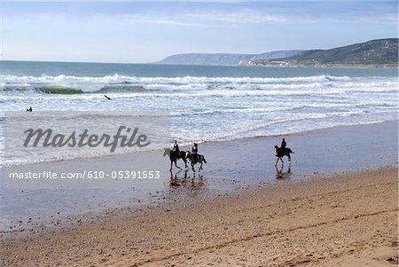 Maroc, chevaux sur la plage de Tamraght