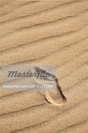Spanien, Kanarische Inseln, natürlichen Park von Corralejo, Fußabdruck im sand