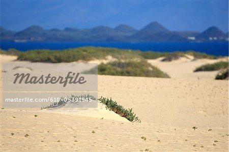 Spanien, Kanarische Inseln, natürlichen Park von Corralejo, Strand