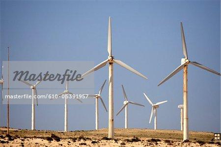 Spain, Canary islands, Costa Calma, windmills