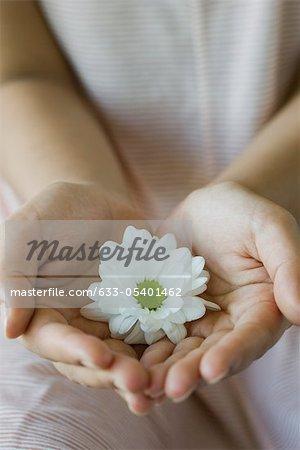 Femme tenant daisy en mains, recadrées