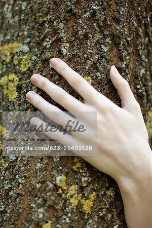 Main de la femme touchant l'écorce des arbres, recadrée