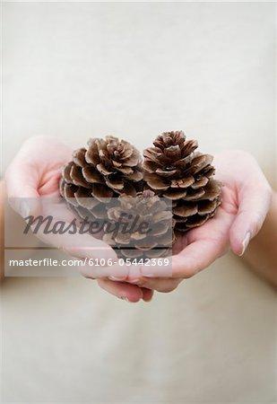 Woman holding three pine cones