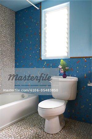 Baignoire et toilette dans les toilettes