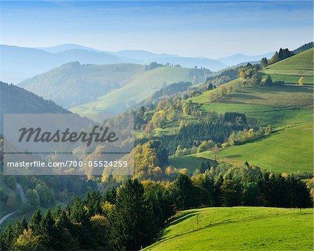 Berge und Ackerland, Willnau, Schwarzwald, Baden-Württemberg, Deutschland