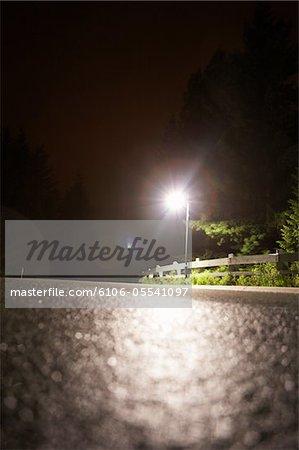Wet winding road in fog, night