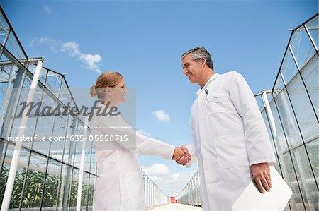 Scientifiques lui serrer la main à l'extérieur des serres