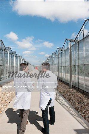 Scientists walking between greenhouses