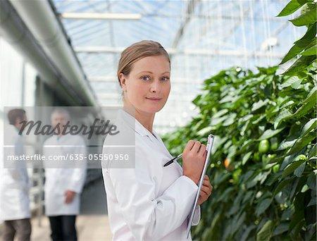 Scientifique examinant les plantes en serre