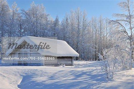 Winterszene, Kuusamo, Österbotten, Nordfinnland