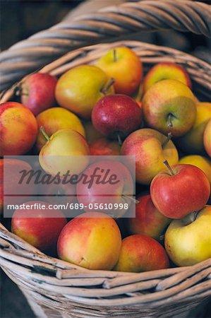 Pommes dans le panier en osier
