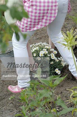 Woman planting Marguerite
