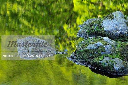 Cours d'eau, Parc National du Harz, Okertal, Oker, Basse-Saxe, Allemagne