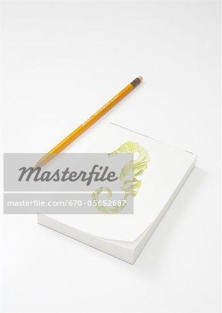 Seepferdchen gezeichneten Notizblock und Bleistift