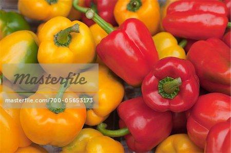 Red and Yellow Peppers, Pakklong Talat Market, Bangkok, Thailand