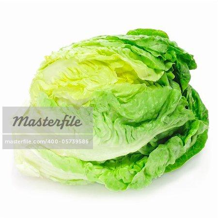 an iceberg lettuce on a white background