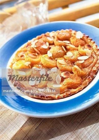 Aprikose-Mandel-Torte, Nahaufnahme