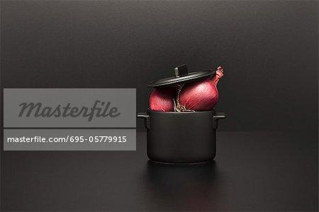 Food Konzept, frischen Zwiebeln auf Miniatur-Topf