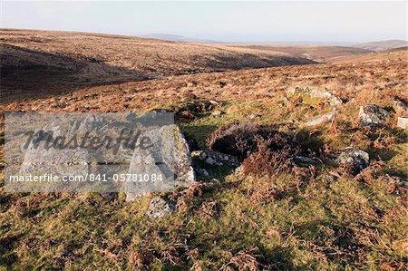 Bronze Age, ruined house, Dartmoor, Devon, England, United Kingdom, Europe