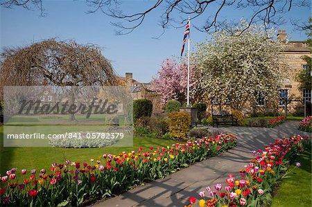 Masses de tulipes colorées printemps dans les jardins de bain, Bakewell, Derbyshire, Parc National de Peak District, Angleterre, Royaume-Uni, Europe