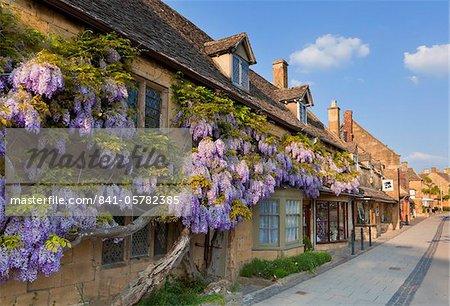 Fleurs violet glycine sur un mur de maison en pierre de Cotswold dans le village de Broadway, les Cotswolds, Worcestershire, Angleterre, Royaume-Uni, Europe