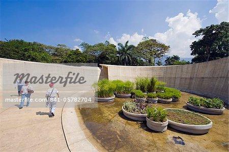 Jardin Botanico Joaquin Antonio Uribe, botanical gardens, Medellin, Colombia, South America