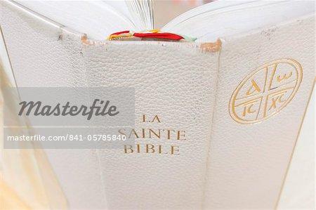 Gros plan du Bible, La Salette, Isère, France, Europe