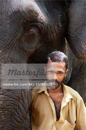 Éléphant avec Mahoot, Kerala, Inde, Asie