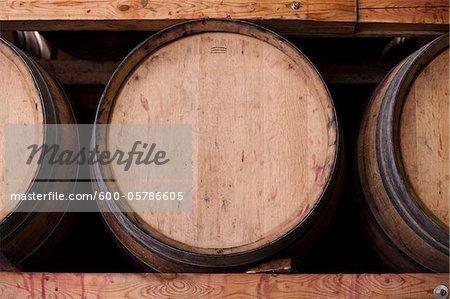 Barrels at  Vineyard, Niagara Region, Ontario, Canada