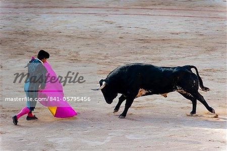Stierkampf mit Matadore, San Fermin Festival, Pamplona, Navarra, Spanien, Europa