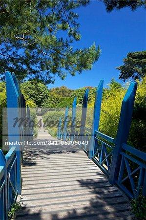 Blau im japanischen Stil-Brücke in subtropischen Gärten der Abtei, Insel der Tresco, Isles of Scilly, England, Vereinigtes Königreich, Europa