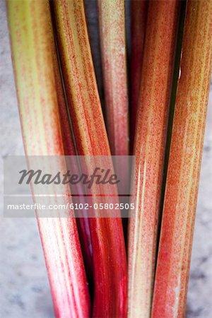 Close-up of rhubarb