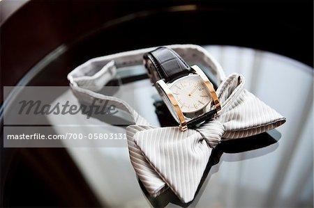 Fliege und Armbanduhr