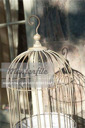 Cage à oiseaux, Toronto, Ontario, Canada