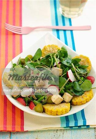 Cresson, radis, maïs sucré, salade de concombre et tofu