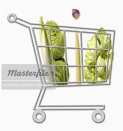 Chariot mini supermarché plein de légumes biologiques