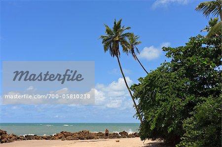 Praia de Tabatinga, Tabatinga Beach, Paraiba, Brazil