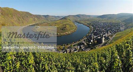 Mosel, Moseltal und Bremm, Cochem-Zell, Rheinland-Pfalz, Deutschland