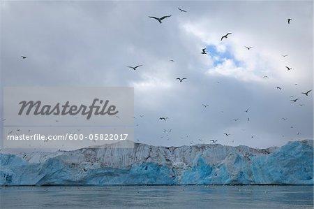 Monacobreen Glacier, Haakon VII Land, Spitzbergen, Svalbard, Norway