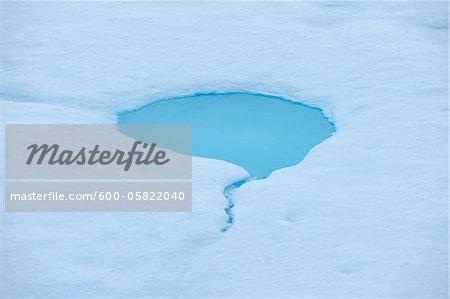 Pack Eis, Grönlandsee, Nordpolarmeer, Arktis